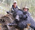 Idaho Spring Bear Hunts, Idaho Bear Hunts, Idaho Fall Bear Hunts, Idaho Black Bear Hunts