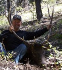 Idaho, Elk, Deer, Bear and Wolf Combo Hunts. Idaho Combo Hunts.