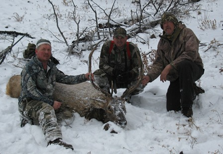 Idaho Elk Hunts. Elk Hunts, Deer Hunts, Bear Hunts and Wolf Hunts.