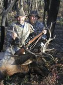 Idaho Elk Hunts, Idaho Rifle Elk Hunts, Idaho Archer Elk Hunts, Elk Hunts during the Rut.