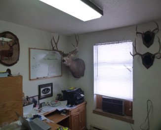 George's newly organized and decorated office