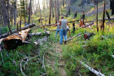 Trail clearing in The Frank
