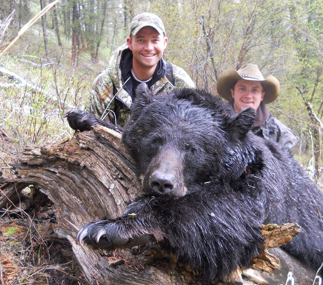 Idaho Spring Bear Hunt, Fall Bpear Hunts